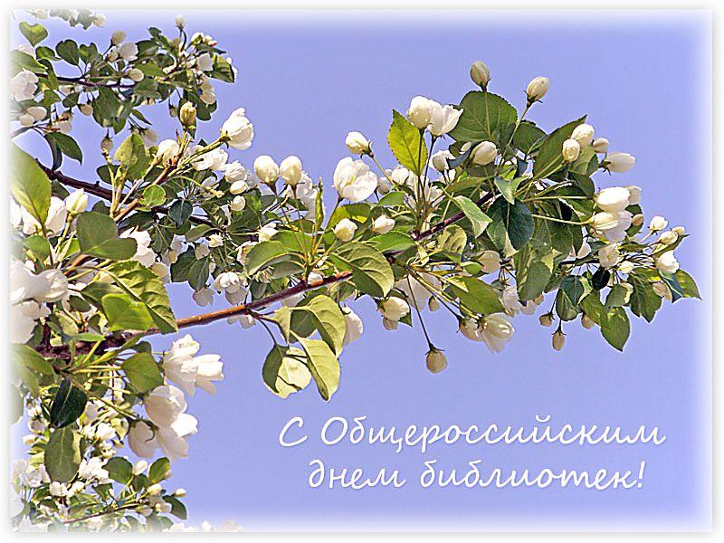 Открытка С Общероссийским Днем библиотек!