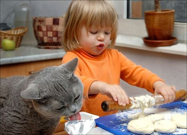 Девочка и кот.jpg