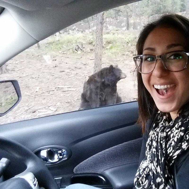 Новый тренд: селфи с медведем