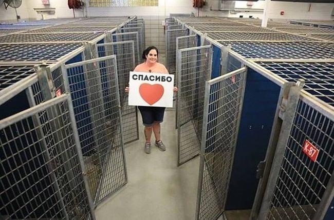 © facebook.com  Каждый год вТехасе проводят акцию «Очистить приюты» (Clear the Shelters). Вт