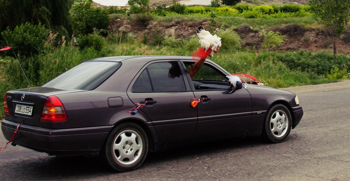 39. Ну и конечно, прекрасные традиции армянских свадеб. С привязанным к капоту барсуком и курицей, т