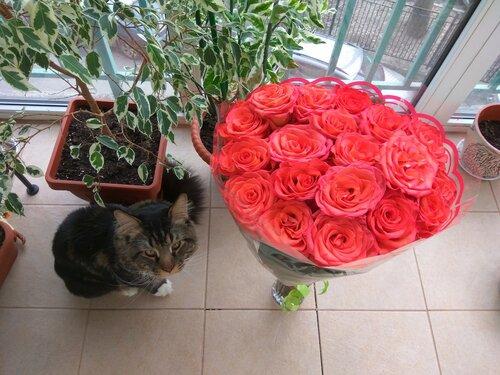 Розы и Гоша.jpg