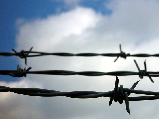 Amnesty International требует расследовать массовые задержания гомосексуалов вЧечне