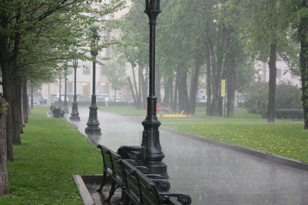 Дождь-22.jpg