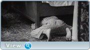 http//img-fotki.yandex.ru/get/169608/4074623.99/0_1bfe3e_f0fbecb5_orig.jpg