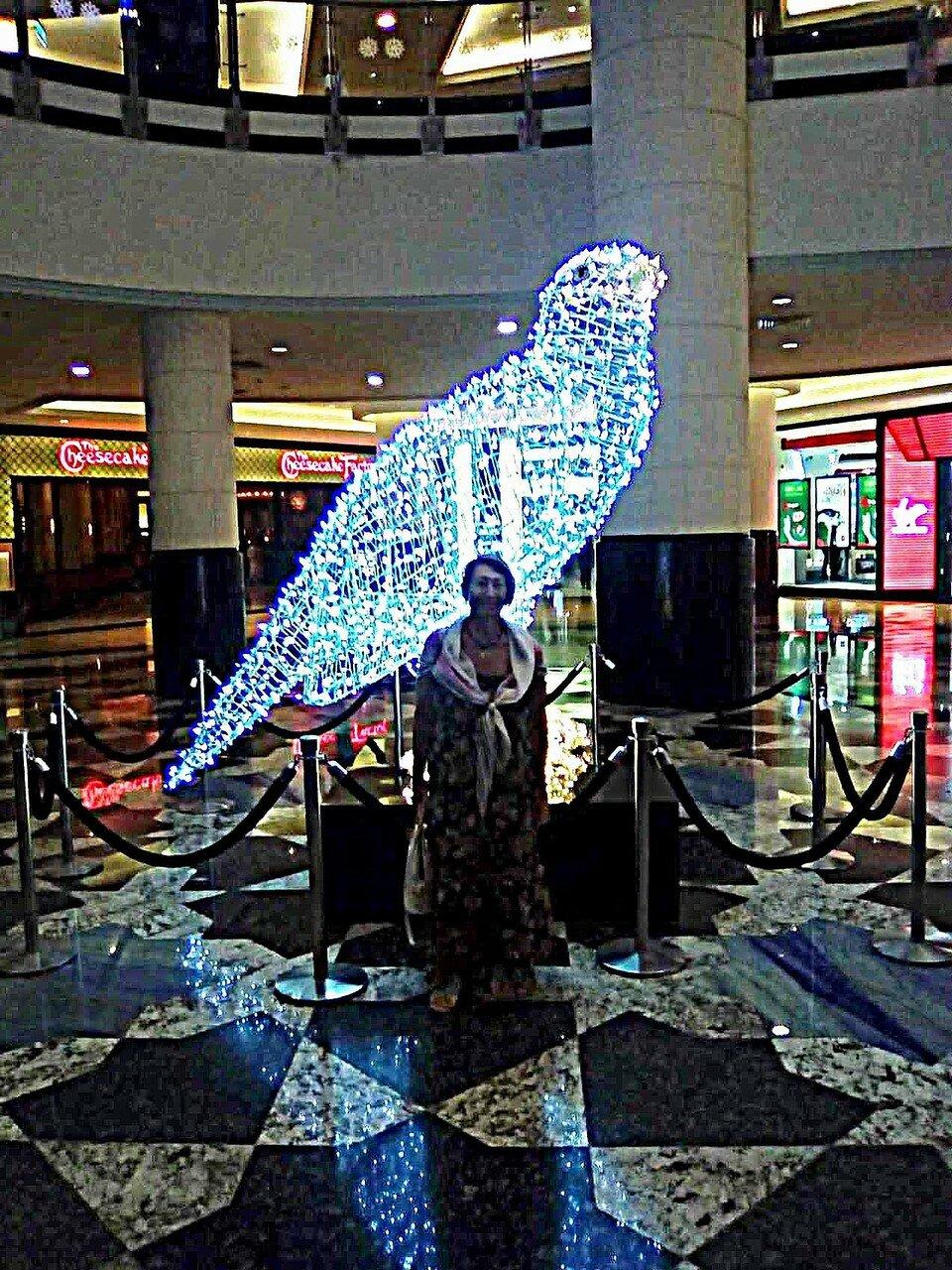 Дубаи 28 11 2016 (5).jpg