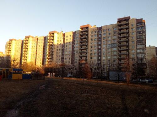 Бухарестская ул. 152к2