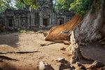 Храм в джунглях