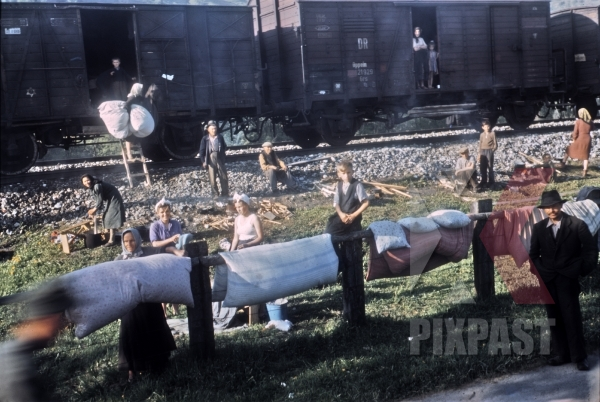 stock-photo-gypsies-freed-from-a-german-transport-train-collect-bed-material-from-american-gis-bischofshofen--austria-1945-12871.jpg