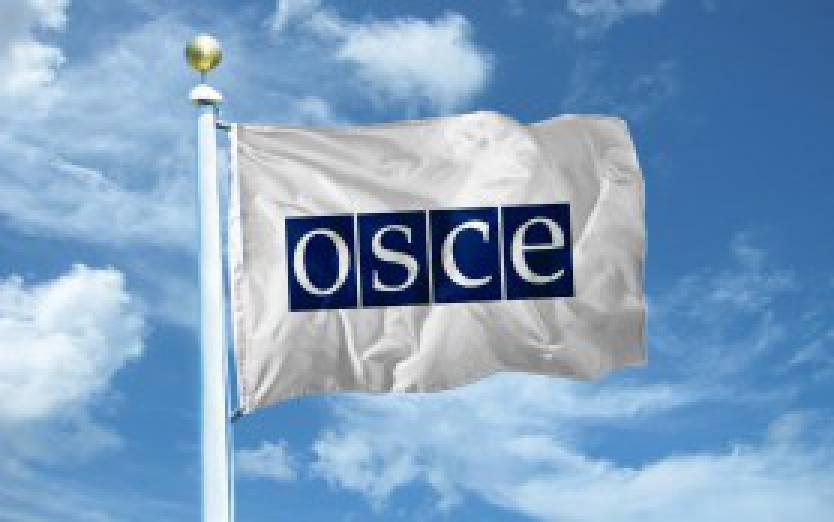 ОБСЕ зафиксировала 258 взрывов на Донбассе 25 мая