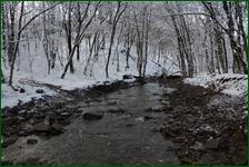 http://img-fotki.yandex.ru/get/169883/15842935.41d/0_f1852_f7503a1b_orig.jpg