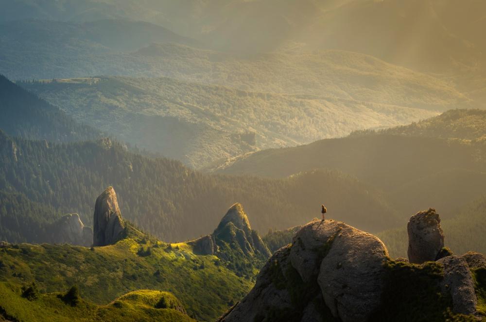 © David Marcu/ Unsplash  Вгорах мыближе ксебе настоящим, чем вгородах.
