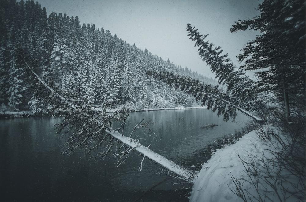 © Juuso Voutilainen/REX/Shutterstock  Канадская Альберта— именно вэтих суровых местах снимал