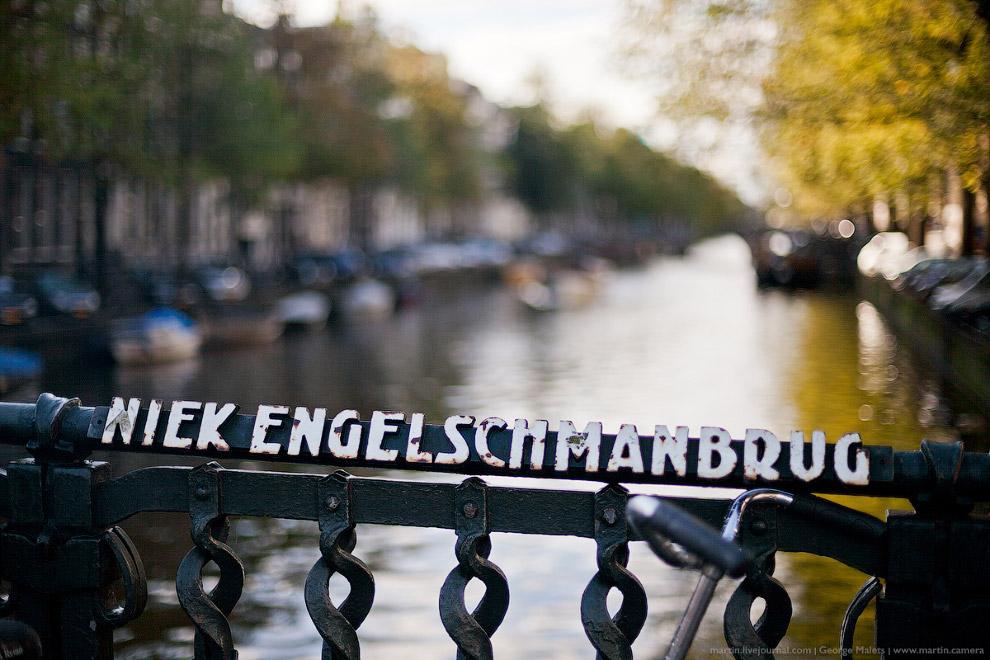 А вот котиков в Амстердаме, к сожалению, оказалось мало.
