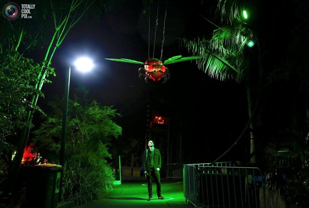 Скульптуры Зоопарка Таронга, изображающие находящихся под угрозой исчезновения животных: азиатский о