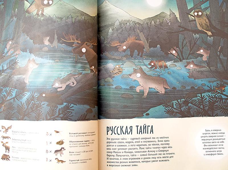 удивительные-приключения-в-мир-животных-отзыв-игрушки-айхерб-скидка-код-iherb-munchkin6.jpg