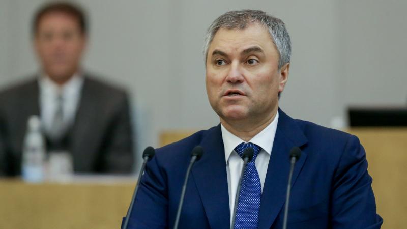 Володин: намитингах русские правоохранительные органы действуют мягче западных
