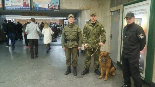с собаками в метро нельзя киев