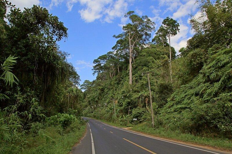 Пейзажи вокруг дороги при поездке изКао Лака в Такуа Па