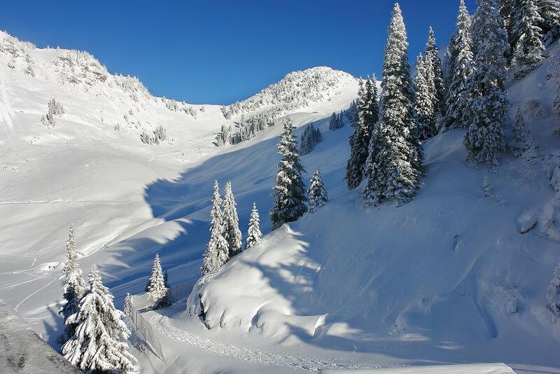 все потонуло в снежной белизне