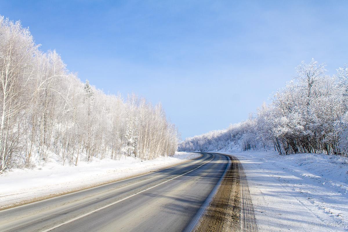 зима дорога фото 1