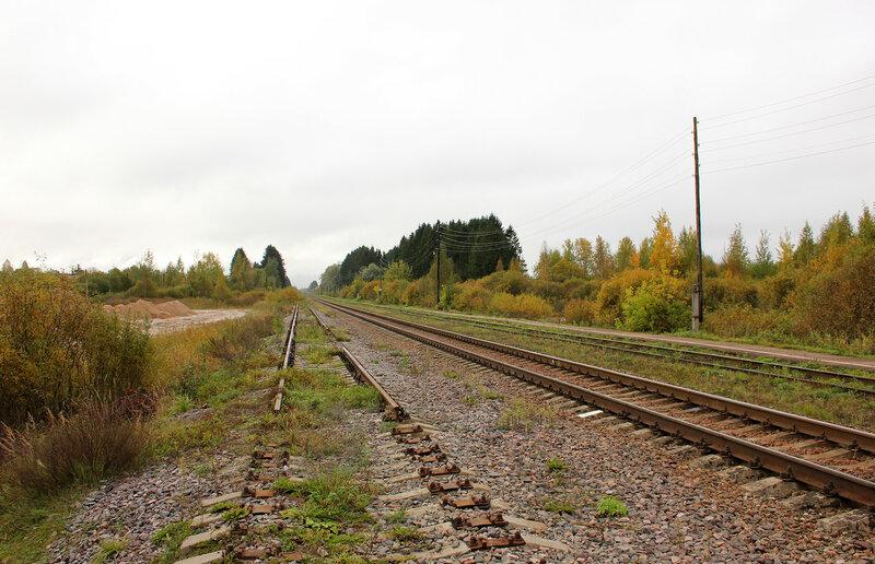 Станция Кесова гора, разобранный путь. Вид на Савёлово