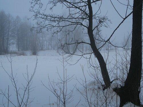 Утренний туман в январе