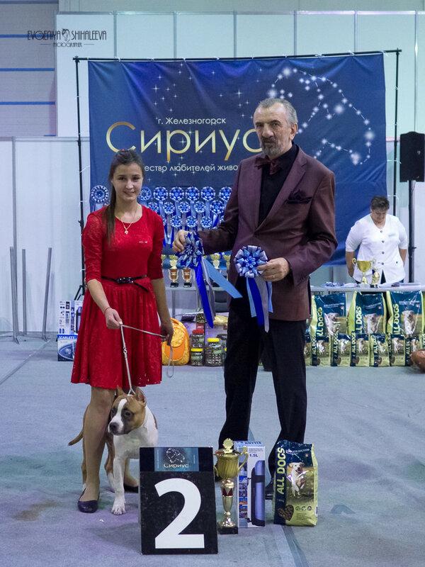 https://img-fotki.yandex.ru/get/169995/259726784.e0/0_213d63_86e2b327_XL.jpg