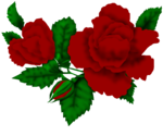 SSS_Roses_Element-12.png