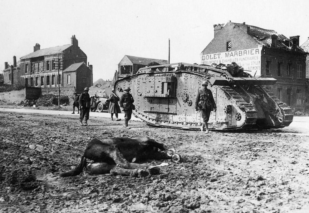 Собака-почтальон. Солдат прикрепляет сообщение. (Фото National Library of Scotland):