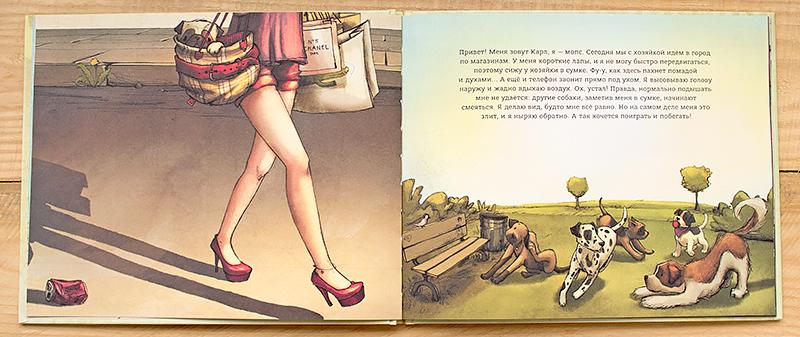 аллюрборкс-гламурбэг-свитер-фаберлик-колготки-книга-карл-мопс-отзыв12.jpg