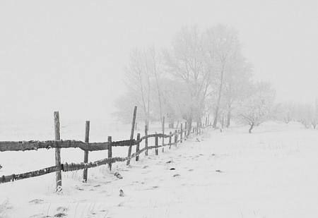 Облачно и4 градуса тепла— Прогноз насубботу
