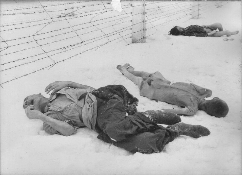 Погибшие заключенные концлагеря Освенцим, лежащие у колючей проволоки