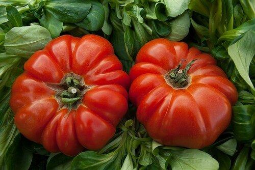 Это томаты следят за нами...
