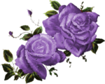 CJ_Colored Roses 2Lg_3.png