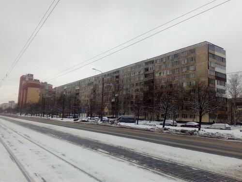 Бухарестская ул. 86к1