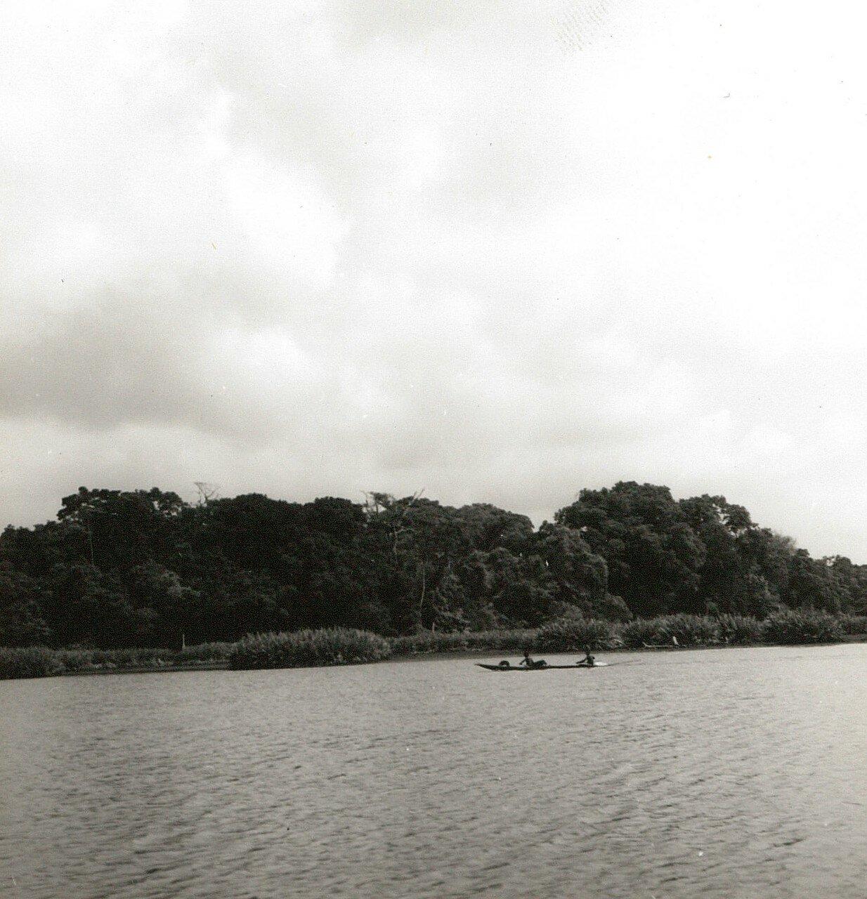 Абиджан. Остров Буле в лагуне Эбрие. Вид в сторону берега и тропических лесов