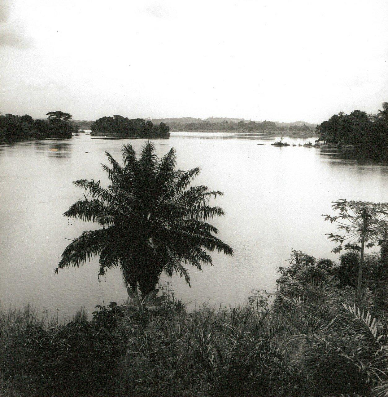 Гана. Река Вольта. Тропический лес
