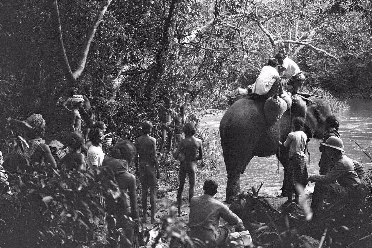 98. Пересечение реки  Гал-Оя  на слонах