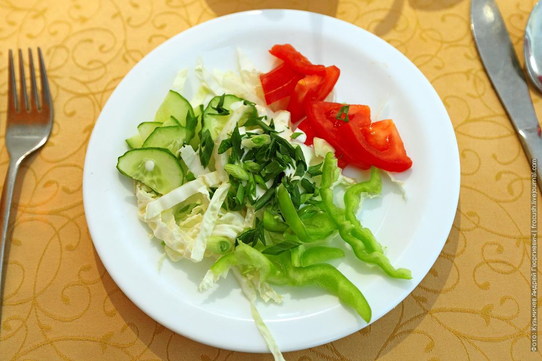 чем кормят в ресторане теплохода Салат из свежих овощей