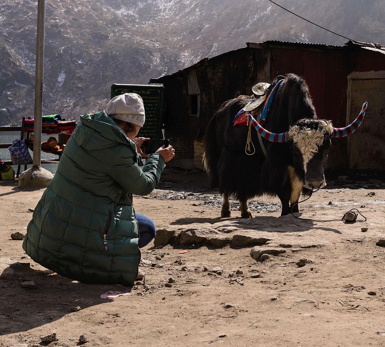 Снимок 3. Однажды в индийских Гималаях. Отзывы путешественников о поездке в штат Сикким. 1/800, -1.33, 9.0, 200, 50.