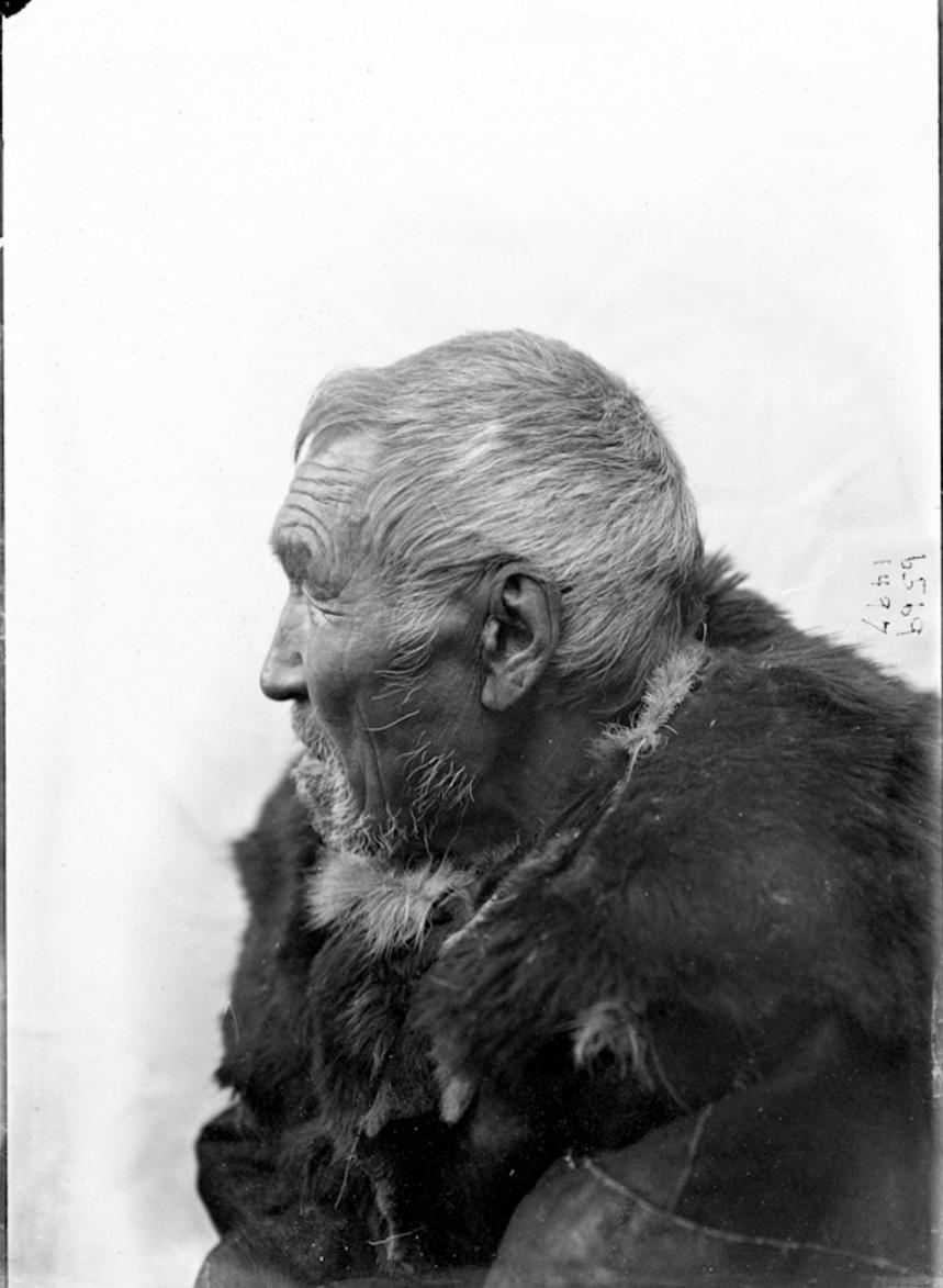 Оленный коряк, 1901