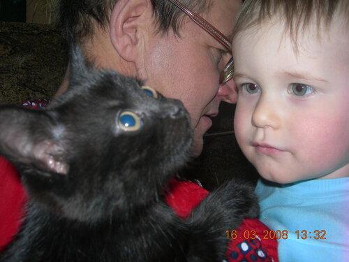 pashe-elena — «черный кот» на Яндекс.Фотках
