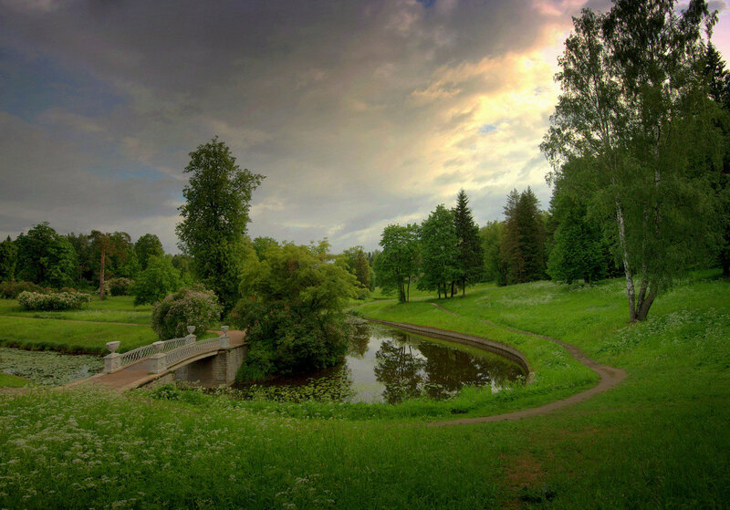 Утро в парке