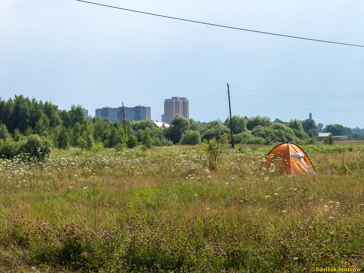 Урочище Волхонка. Ногинск. Московская область. Июль 2016