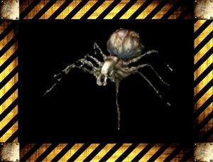 Враги Resident Evil Code: Veronica 0_154bbe_fa4ccef_M