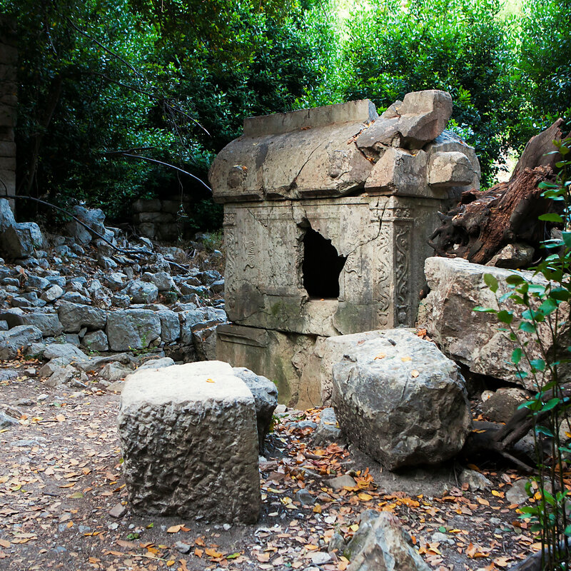 The sarcophagus in the reserve near Olympos in Ciral Turkeyi