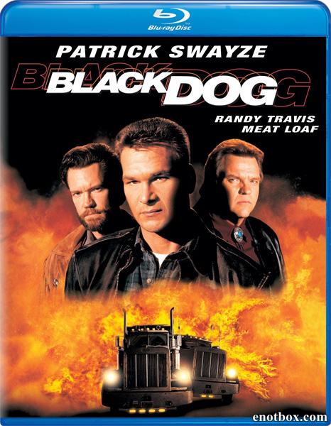 Черный пес / Black Dog (1998/BDRip/HDTVRip)