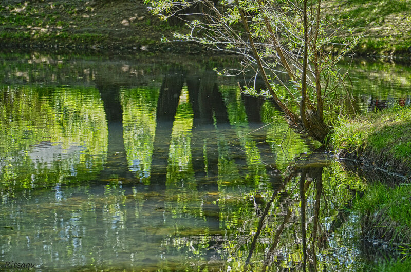 Воронцовский пруд