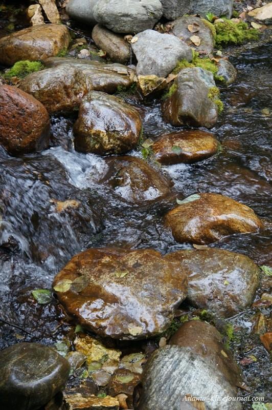 watermarked - 19.07.13 (52).JPG